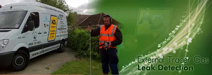 External Tracer Gas Leak Detection